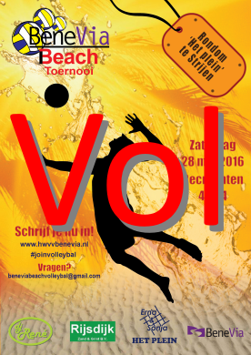 2016 beach flyer small vol